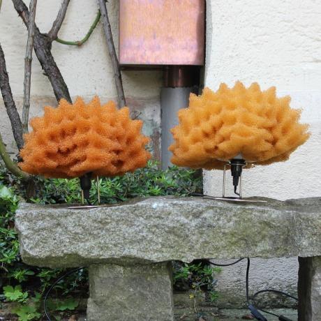 masayo.lamp