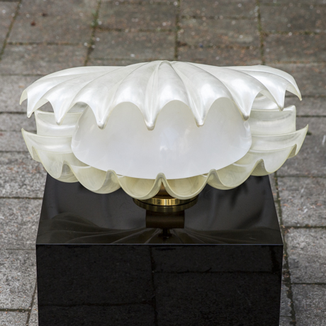 Acrylic_Rougier_Clam_Shell_Lamp