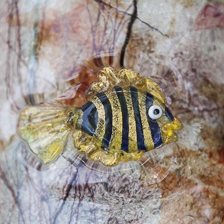 aquarium_wall_sconce_fish_Fisch