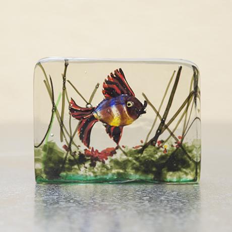 Cenedese_aquarium_Murano_Glas_Barbini