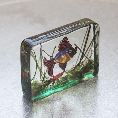 Cenedese_aquarium_glass_colorful