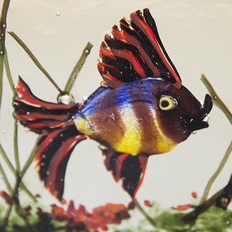 aquarium_glass_fish_Murano_Barbini
