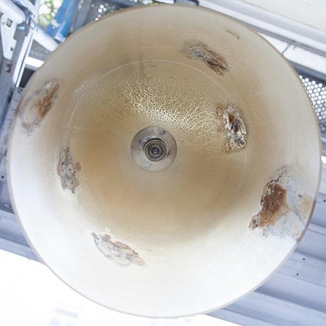 Alfredo_Barbini_medusa_ceiling_lamp