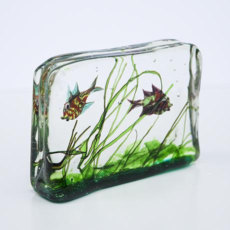 Barbini-murano-glas-aquarium-fische