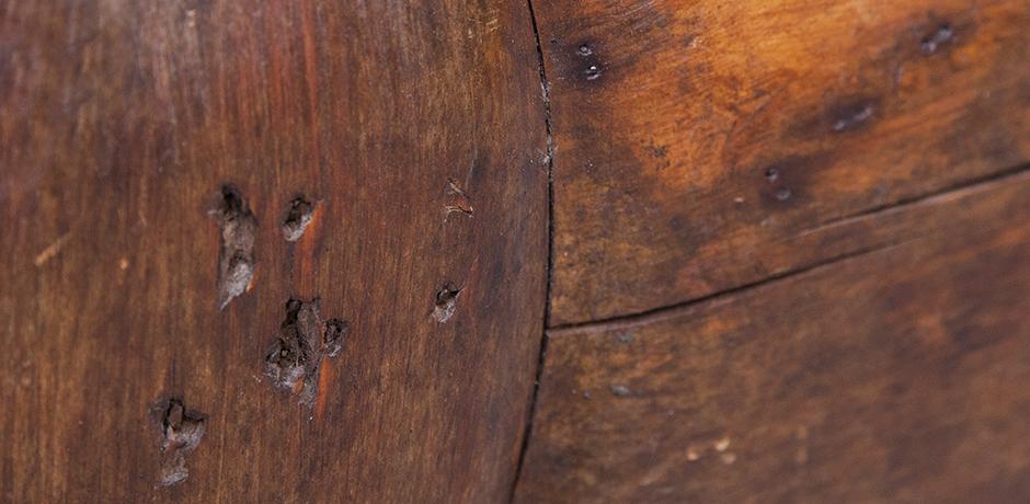 wooden-horse-holzpferd
